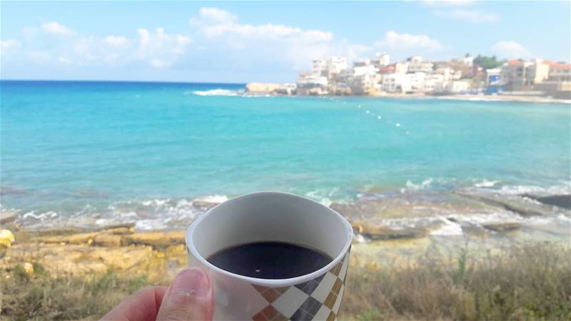 Do not drink your coffee in a plastic cup!Good morning sea-lovers 🌊☕🌊 ... (Centre National des Sciences Marines)